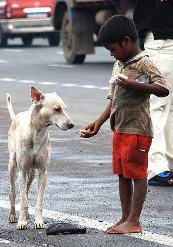 Condivisione: disperata generosità