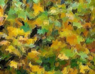 Foglie_autunno_01
