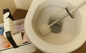 Dopo aver scritto il trattato sulla carta gienica posso fare i biglietti da visita come lavacessi professionista.