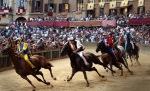 """Le tradizioni non si toccano anche se i cavalli schiattano. Tanto sono solo """"bestie"""" (chi?)."""