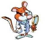 Prof. Rat Quercino