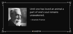quote-until-one-has-loved-an-animal-a-part-of-one-s-soul-remains-unawakened-anatole-france-10-10-27